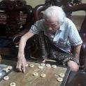 Bệnh mất trí nhớ ở người già nay không cân phải lo khi dùng loại thảo dược này