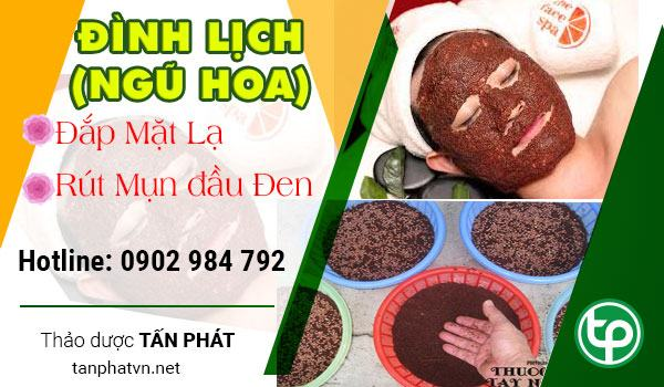 cach dung hat ngu hoa dinh lich