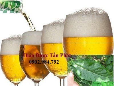 bia va la mat gau tri thoai hoa dot song co